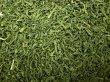 画像1: <業務用>有機釜炒緑茶(宮崎産)(リーフタイプ 500g) (1)